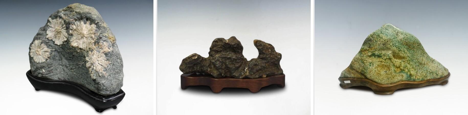 菊花石水石鑑賞石